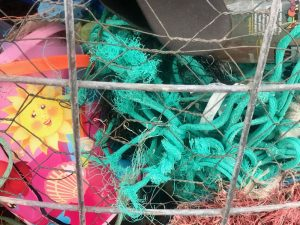 Online Eco Fish Workshop Year 2/3